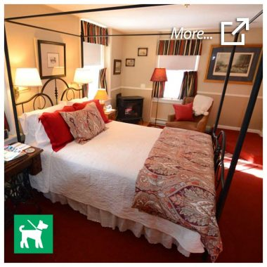 MacDonald room - dog-friendly