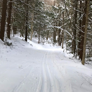 Ski trail in the Berkshires